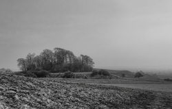 Views from Wittenham Clumps 4/4