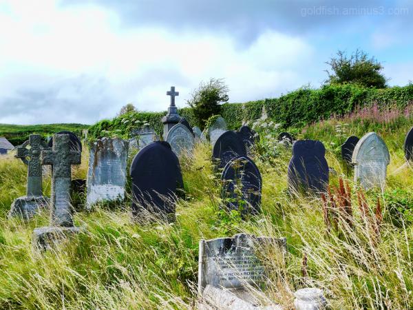 St Seiriol's Graveyard, Ynys Môn (Angelsey) 4/5