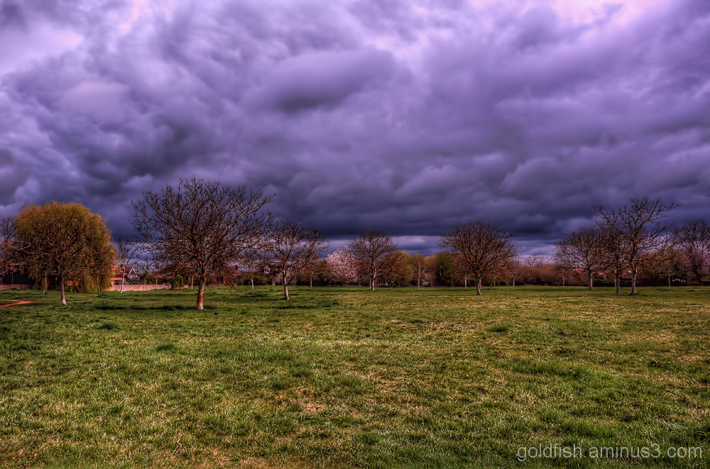 Millennium Green, Drayton