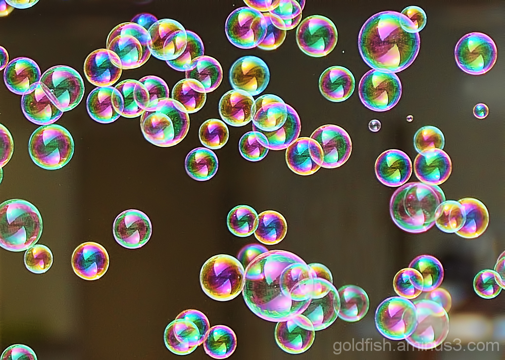 Bubbles on the Wind