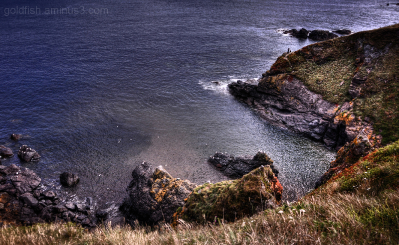 Polbream Cove - The Lizard