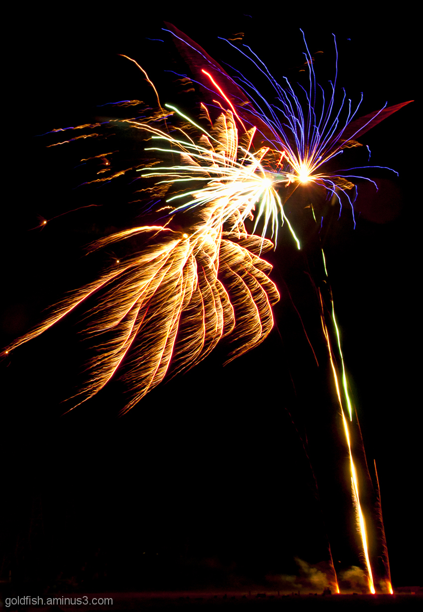 Culham Park Fireworks Display 2/8