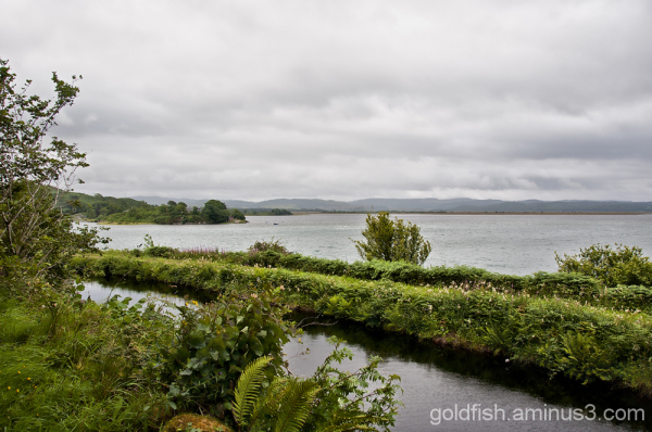 Views from Crinan 5/9 - Crinan Canal