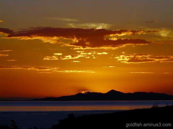 Fiji Sunsets 1/4