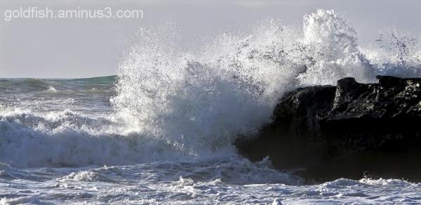 Truman Beach 12/26