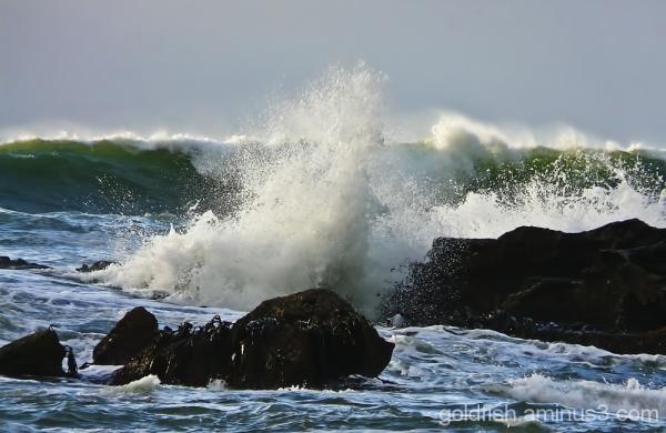 Truman Beach 13/26