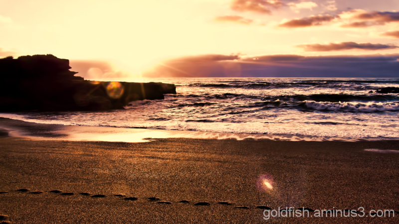 Truman Beach 24/26