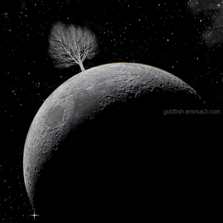The Lunar Tree