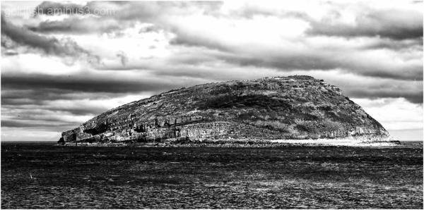 Ynys Seiriol / Puffin Island - 1/5