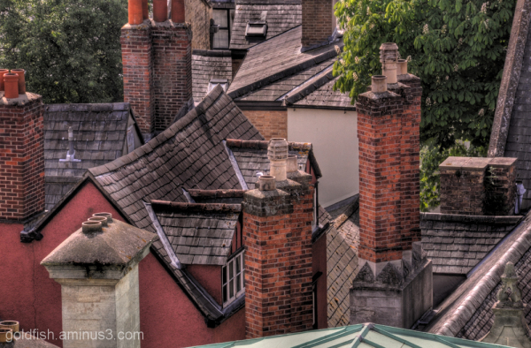 rooftops and chimney pots