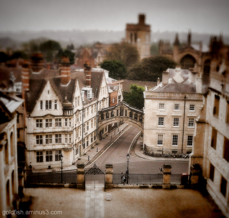 View from the Cupola (processed 2/2)