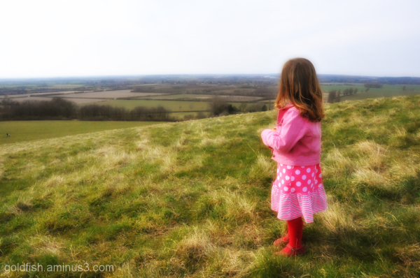 Wittenham Clumps - The Surveyor