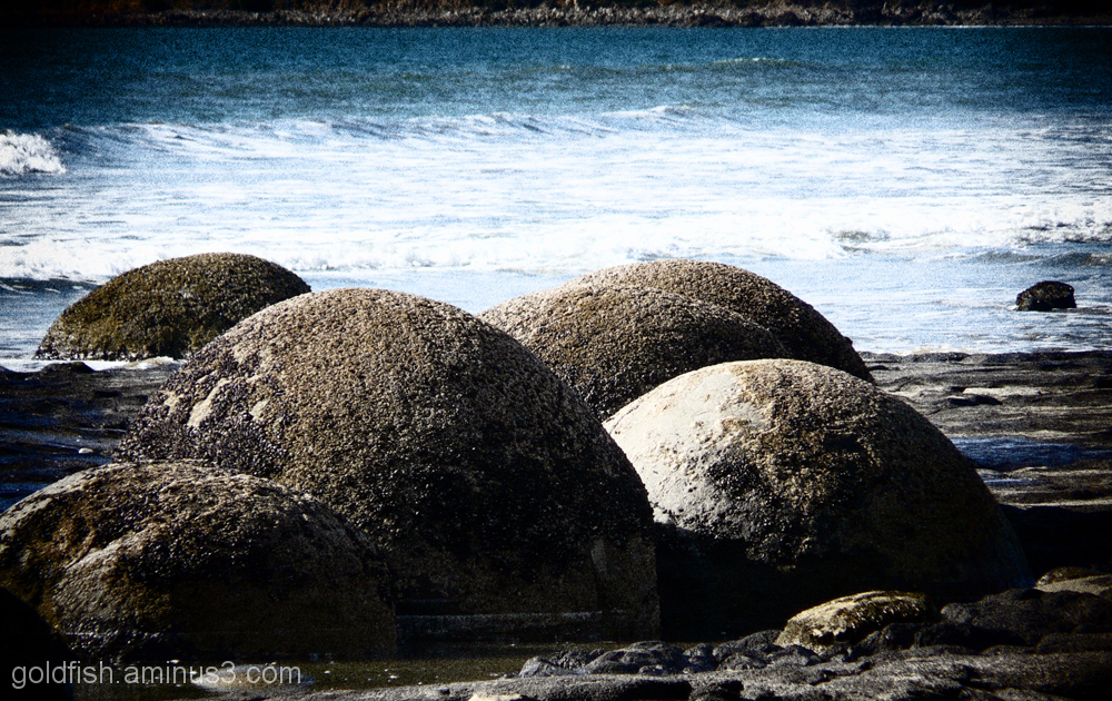 Moeraki Boulders 3/6