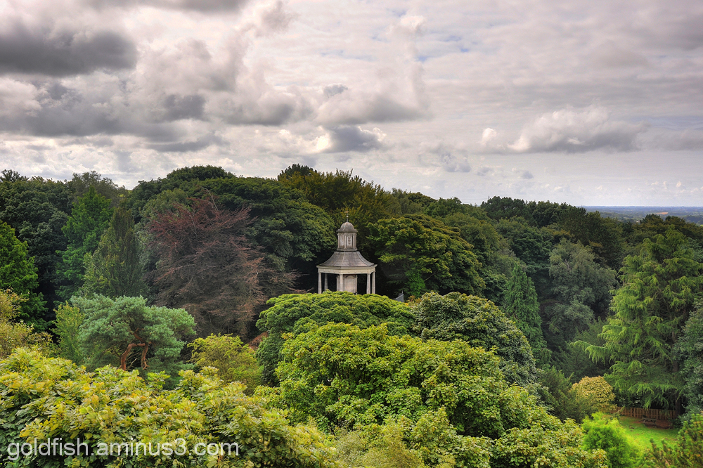 Ashton Memorial 5/7 - View From
