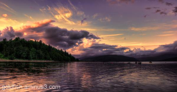 Loch Fyne 3/8