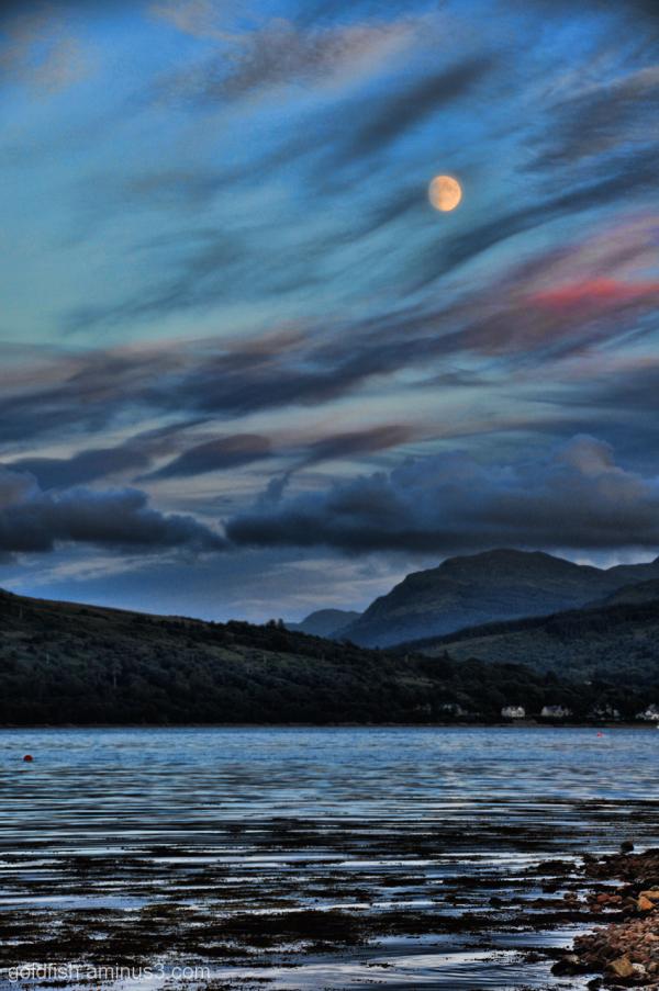 Loch Fyne 5/8
