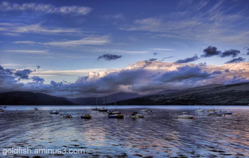 Loch Fyne 8/8