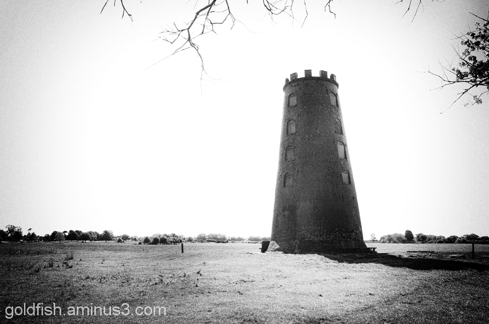 The Black Mill - Beverley Westwood
