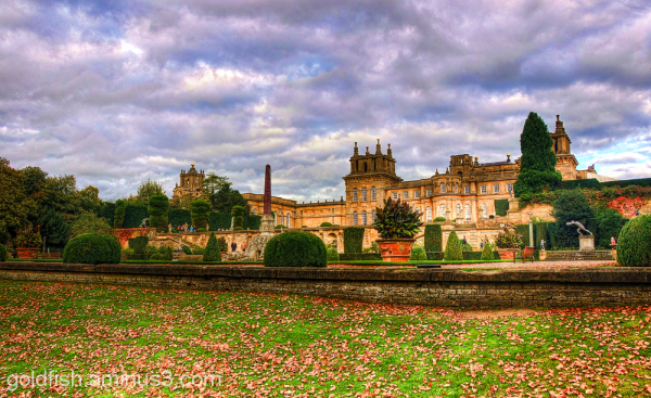 Autumn Colours @ Blenheim 10/12