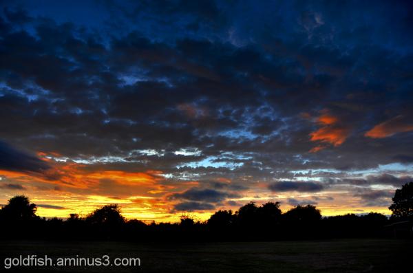 Drayton Sunset 1/3