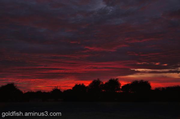 Drayton Sunset 3/3