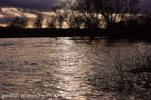 River Thames New Year Flood Alert 2/4