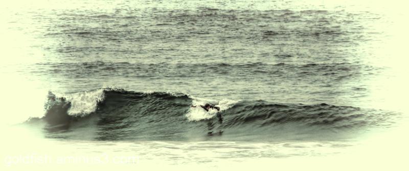 Surf @ Harlyn Bay
