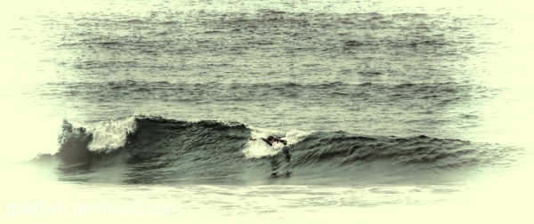 Surf @ Harlyn Bay