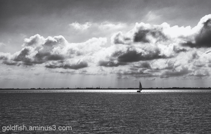 Views from Hessle Foreshore 7/9
