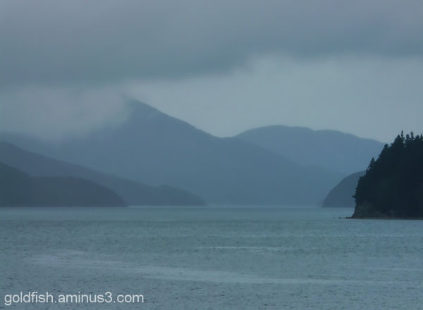 Interislander - Picton to Wellington 1/6