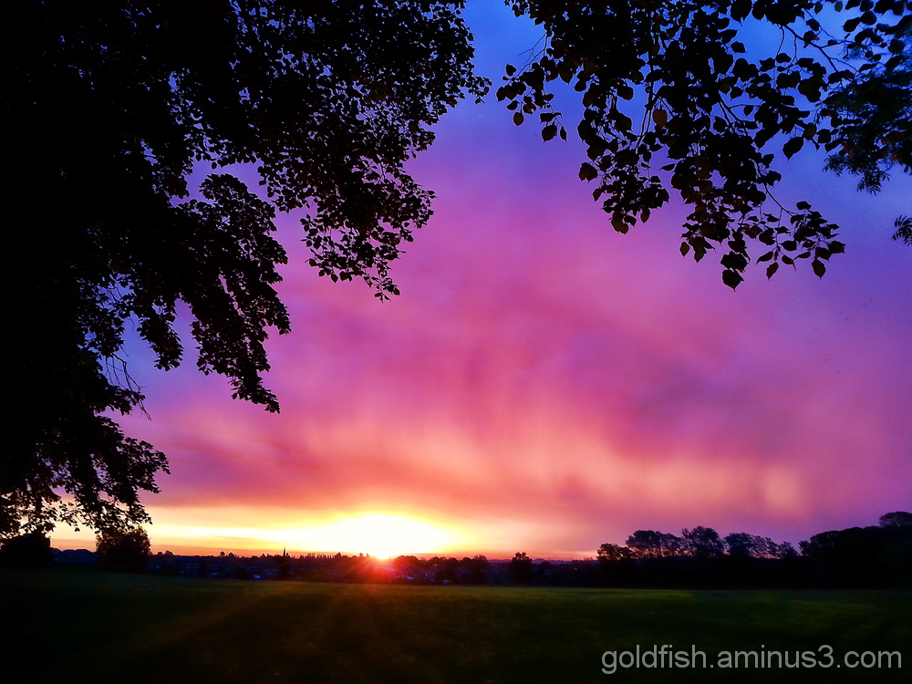 Abingdon Sunrise 2/3