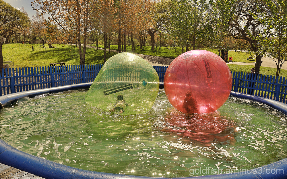 """The """"Bubble Ride"""" 3/3"""