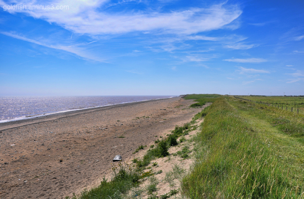 Views From Spurn Head 1/5