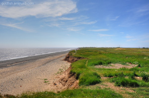 Views From Spurn Head 2/5