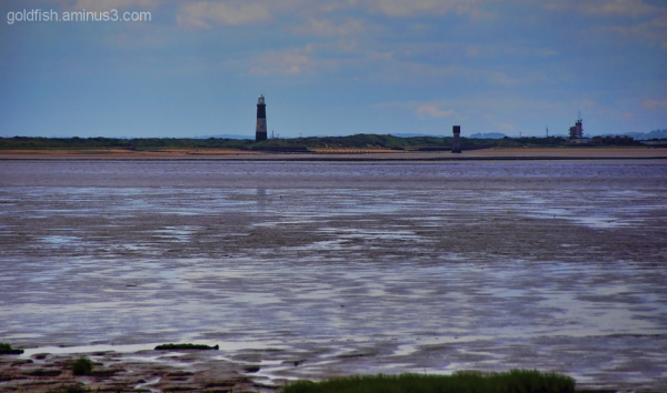 Views From Spurn Head 5/5