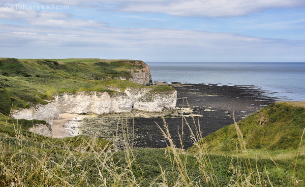 Flamborough Head Views 1/2