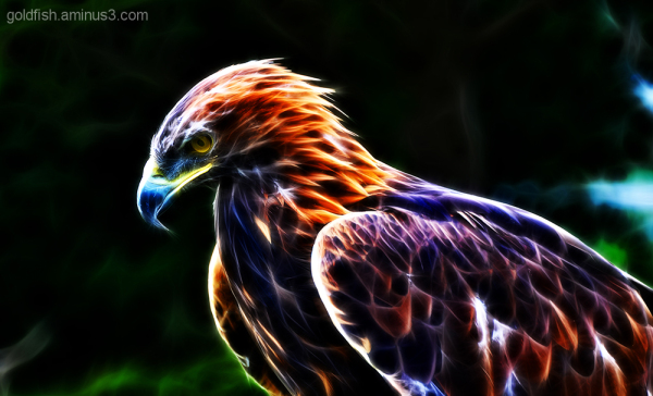 Feathered Fractalius 3/3