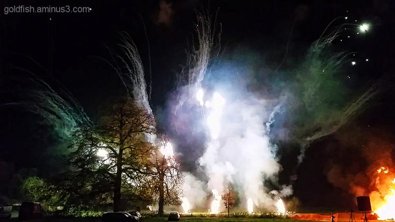 Culham Fireworks 1/11