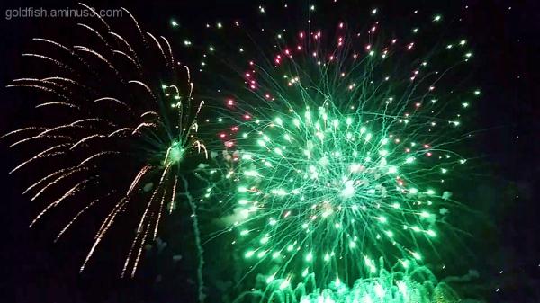 Culham Fireworks 3/11