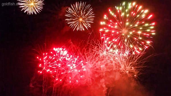 Culham Fireworks 6/11
