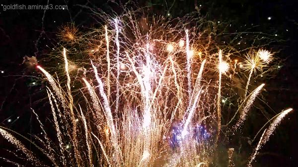 Culham Fireworks 10/11
