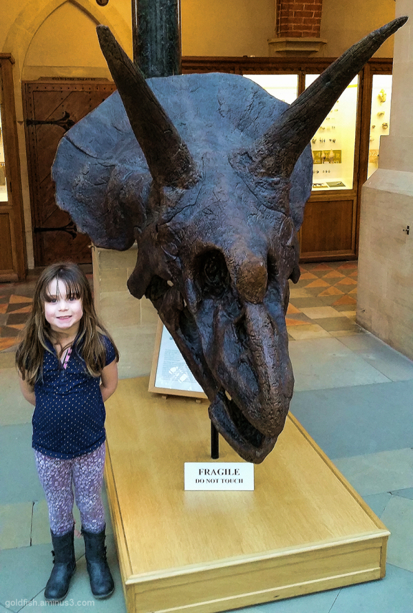 Tegan & the Triceratops (who's the fiercest?)