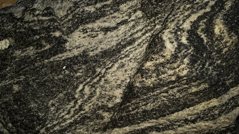 Feeling Good 5/6 - Greenland Gneiss