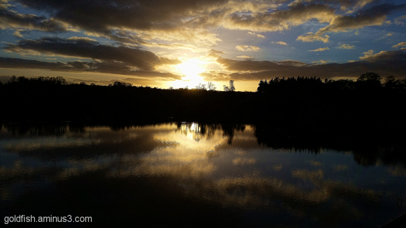 Blenheim Sunset 2/3