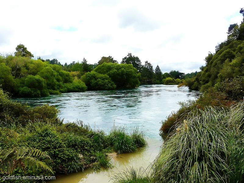 Waikato River & Huka Falls 2/6