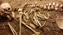 "Dem ""Roman"" Bones"