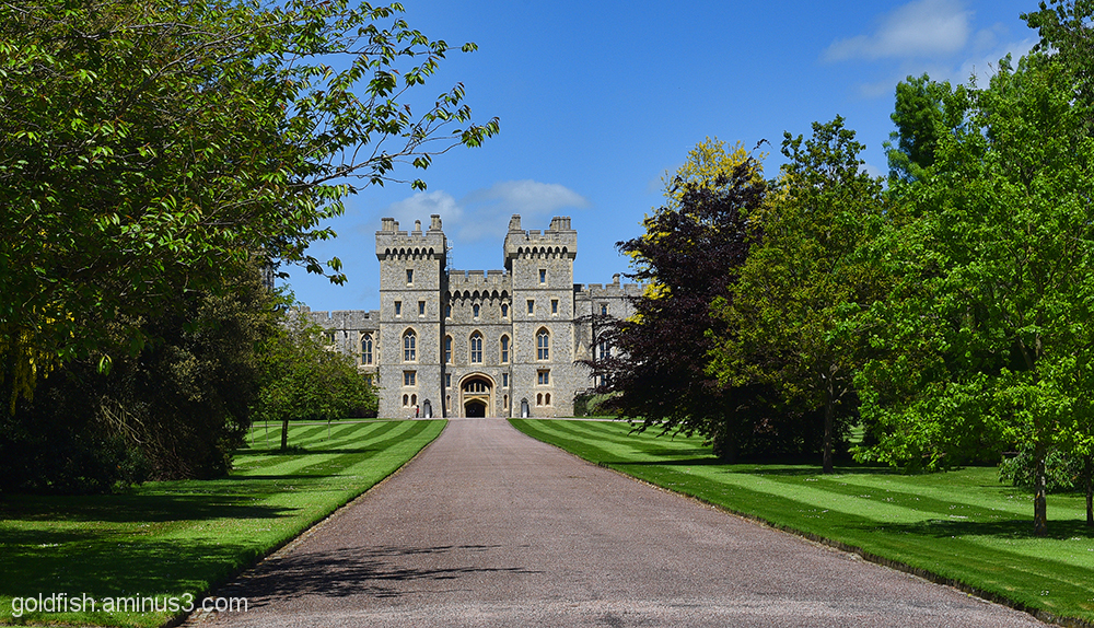 Windsor Castle 3/3