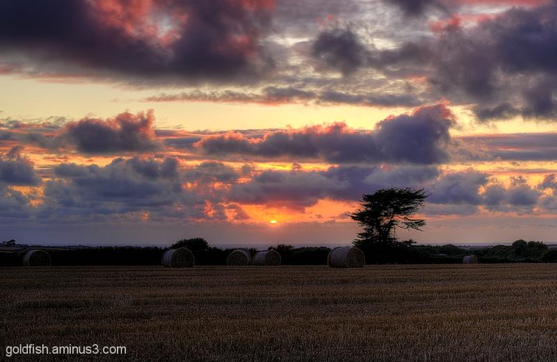 St Merryn Sunset 1/2