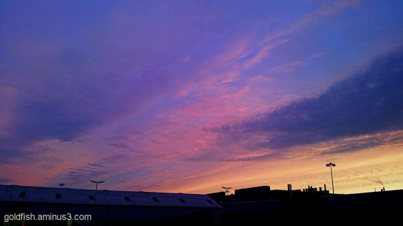 Factory Sunset 1/4