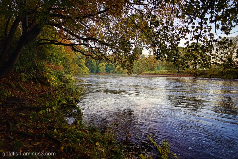 River Lune